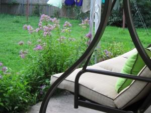 My beloved back porch