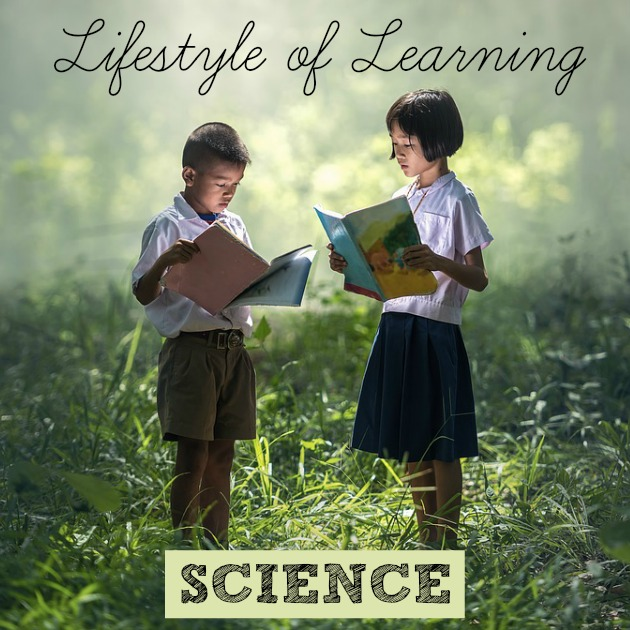 Would you like to stop relying on dry textbooks to homeschool your children? Learn more about homeschooling as a lifestyle in this series!