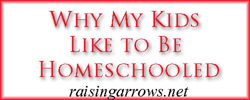 why my kids like being homeschooled