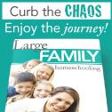 Large Family Homeschool ebook
