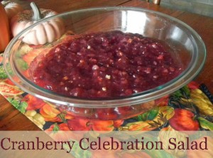 Cranberry Celebration Salad