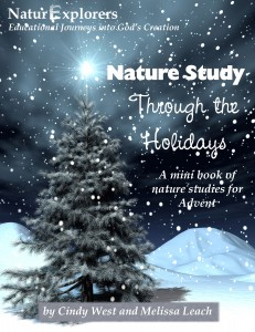 Nature Study Through the Holidays