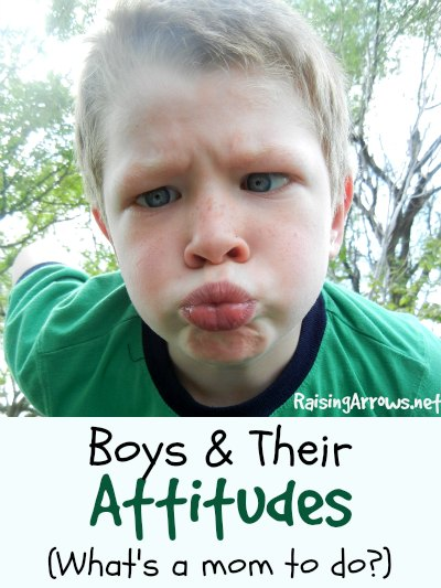 Got boys? Do they give you attitude? Here's why and what you can do about it! | RaisingArrows.net