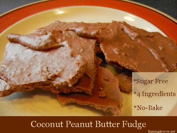 Coconut Peanut Butter Fudge | RaisingArrows.net