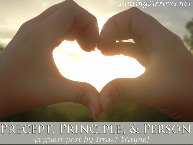 Precept, Principle, & Person {Israel Wayne guest posts on the topic of homeschooling from a Christian worldview} | RaisingArrows.net