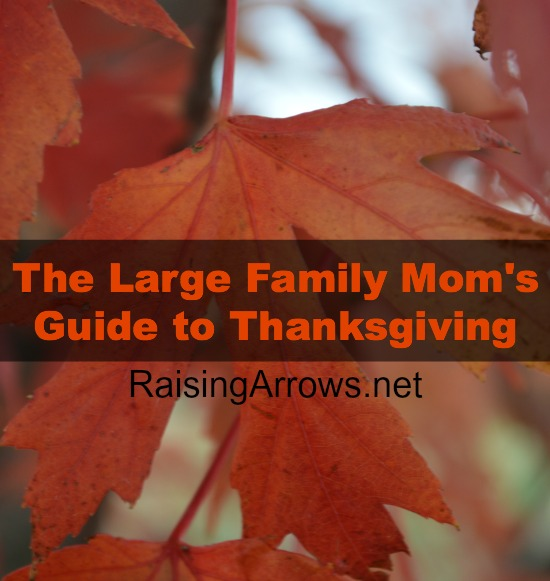 The Large Family Mom's Guide to Thanksgiving | RaisingArrows.net