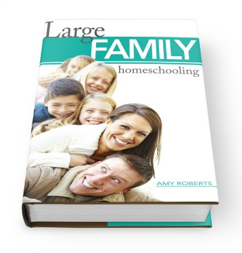 Large Family Homeschooling