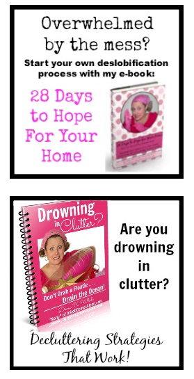 Cleaning & Declutter ebook sale