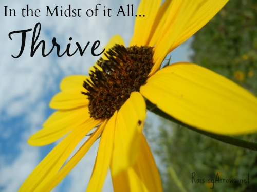 In the Midst of It All...Thrive | RaisingArrows.net
