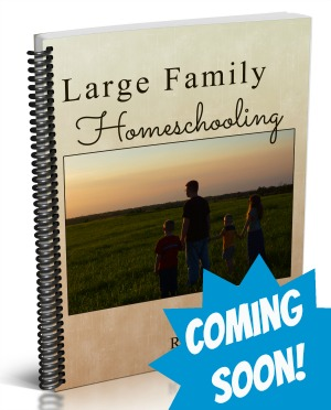 Coming Soon - Large Family Homeschooling by Amy Roberts of RaisingArrows.net