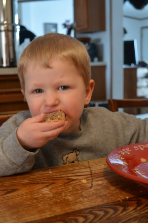 Flaky Whole Wheat Pie Crust - kid approved! | RaisingArrows.net