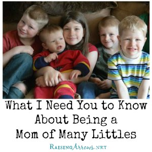 Life is different when you have a lot of little ones. Here are a few of the things you need to know about my life. | RaisingArrows.net