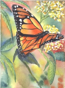 Sign up for See the Light's newsletter and receive a  FREE Butterfly Watercolor project - tell them Raising Arrows sent you!