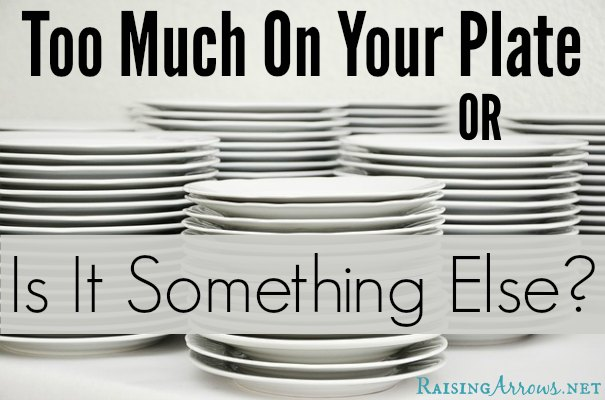 Do you feel like there is too much to do in a day, yet, you cannot figure out where to carve out any more time or how to get rid of any responsibilities?  Perhaps it isn't the stuff on the plate that is causing the problem... | RaisingArrows.net
