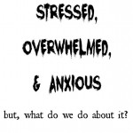 Americans are some of the most stress, anxious and overwhelmed people on the planet. Homemakers and homeschoolers are no exception. But, what can we do about it? Let's discuss!   RaisingArrows.net
