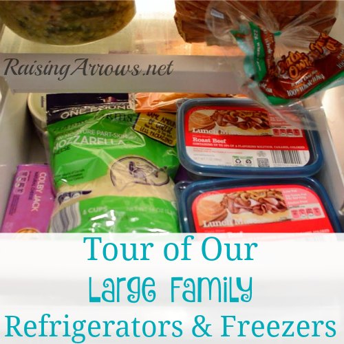 A Tour of My Large Family Refrigerators and Freezers