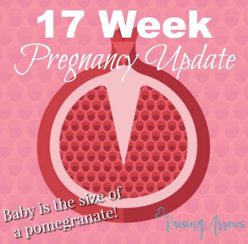 17 Week Pregnancy Update (Baby #10)