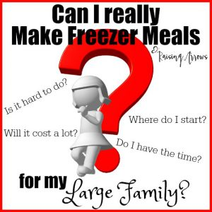 The last time I attempted freezer meals, I was a newlywed! Nearly 10 children later, can I actually make this work for my large family?