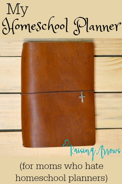 Traditional planners never seem to work for you? This may be your answer! It was mine!