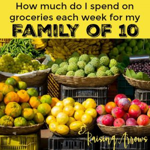 How much does it cost to feed my family of 10?