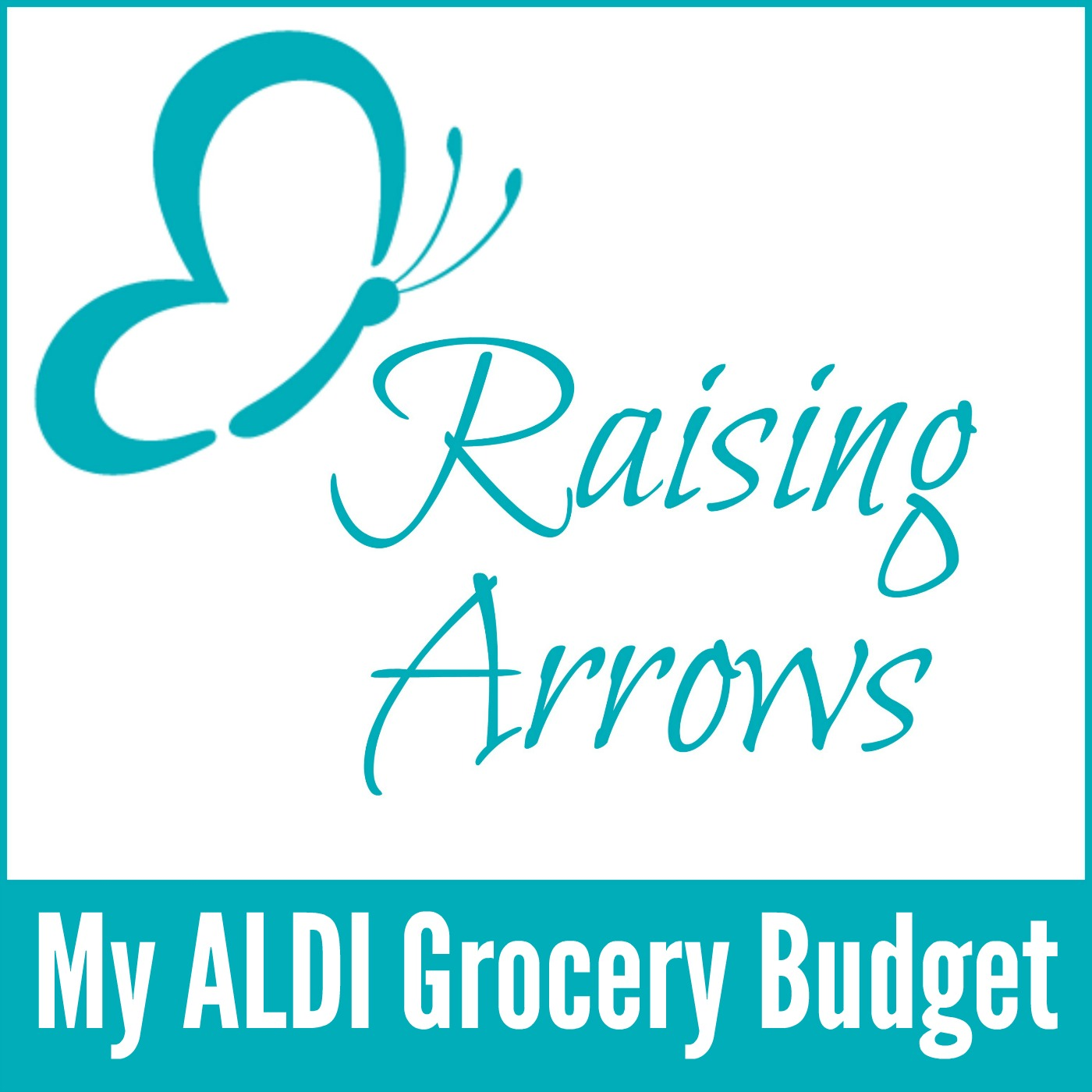 My ALDI Grocery Budget Podcast #014
