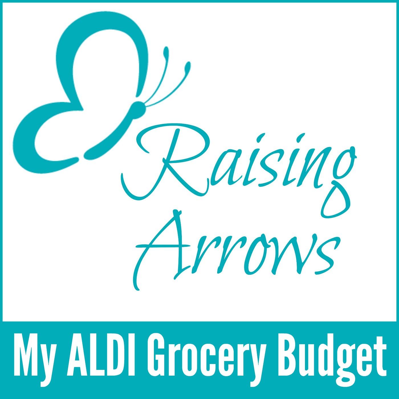 My ALDI Grocery Budget Podcast #014