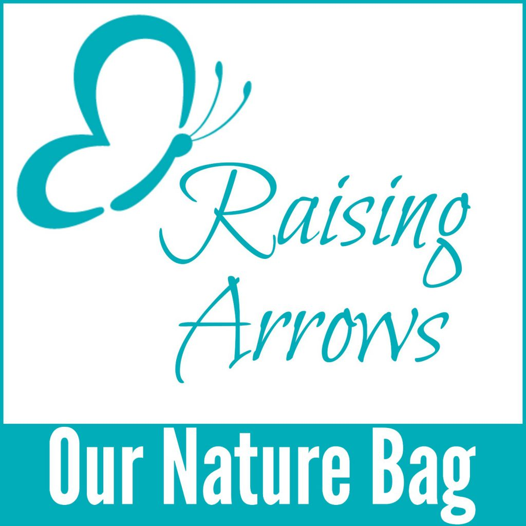 Put your science all in one bag with a Nature Bag! Find out what is in ours!