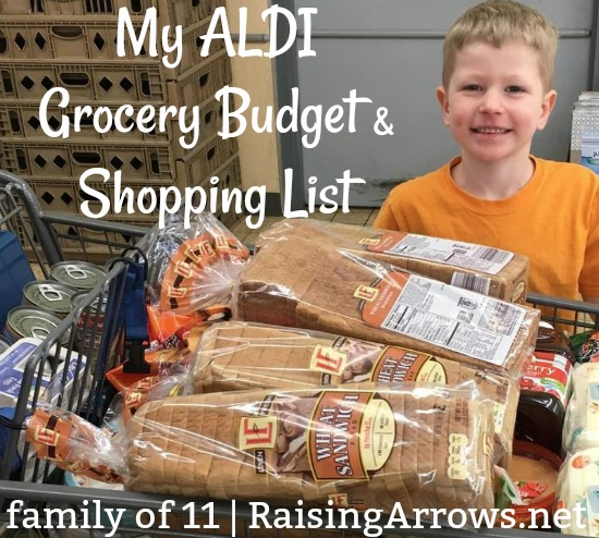 How much does a large family spend at ALDI? What do they buy there? Here's my list!