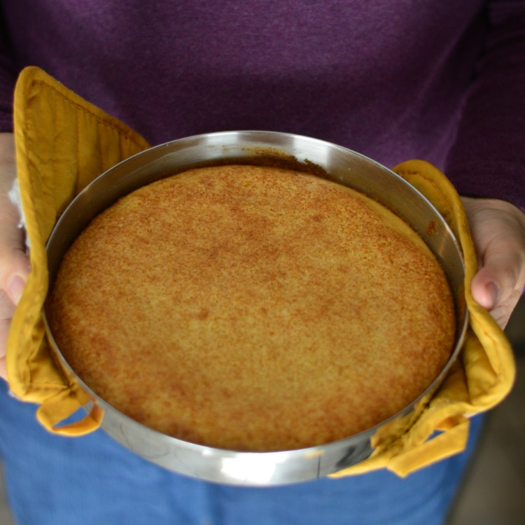 Homemade Yellow Cake Mix made into a cake - really great substitute for boxed mixes!