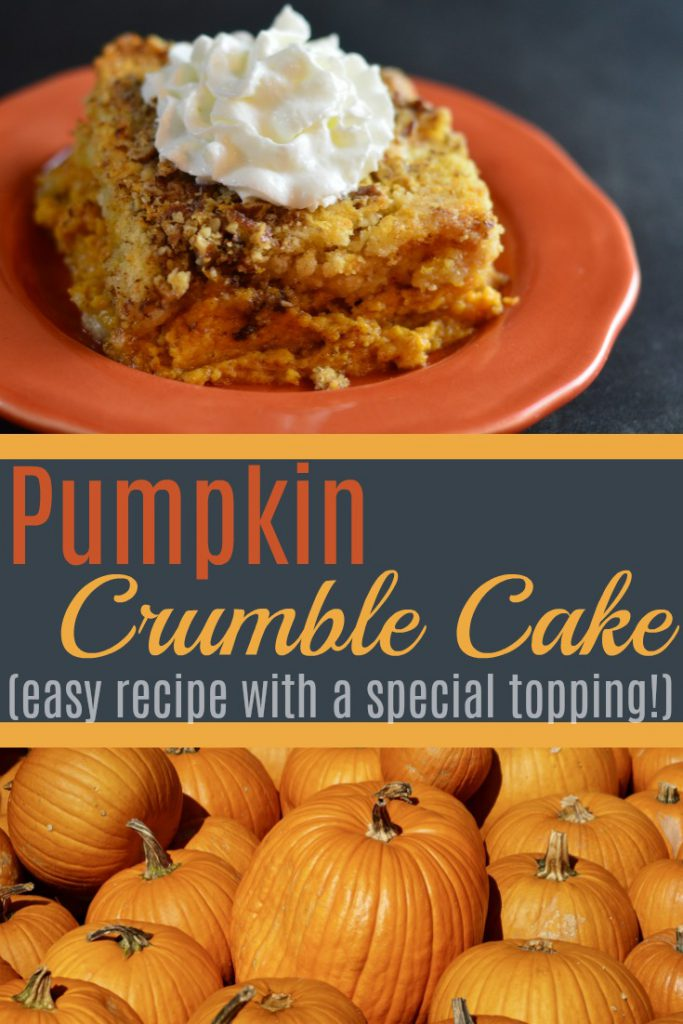 A taste of fall with a dollop of cream on top! This simple crowd-pleasing pumpkin cake is the perfect dessert for your autumn days!