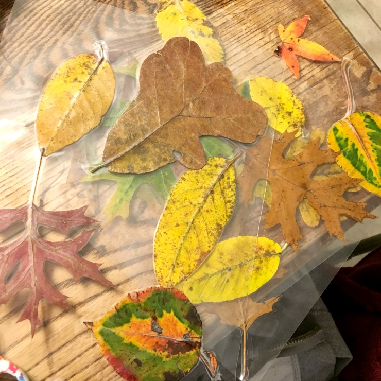 Thanksgiving placemat project from this week's Large Family Homeschooling week in review