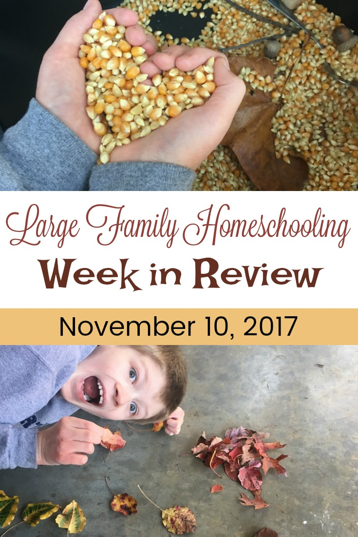 Nature walks, Thanksgiving crafts, and more in this week's Large Family Homeschooling review!