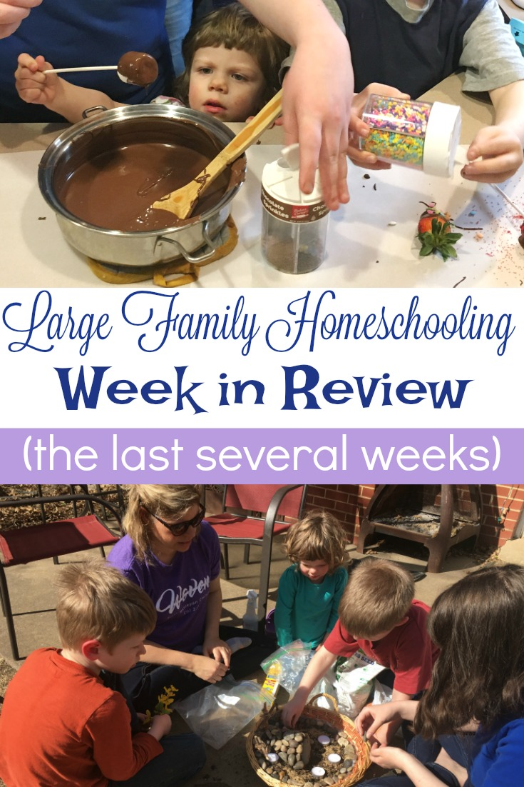 Valentine's Day projects, a Resurrection Garden, and biology experiments and more in this week's Large Family Week in Review (actually, the last several weeks!)