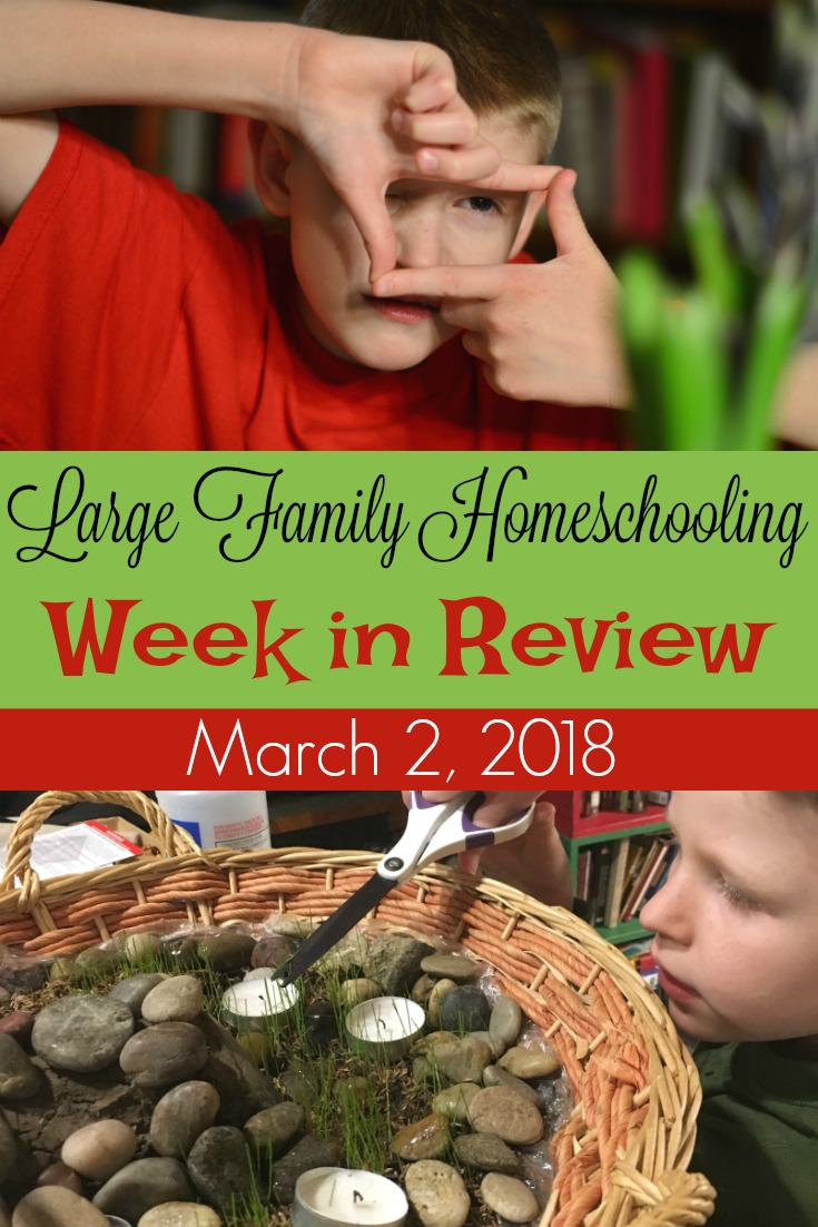 Easy nature study and a simple week in this week's Large Family Homeschooling Week in Review! 3/2/18
