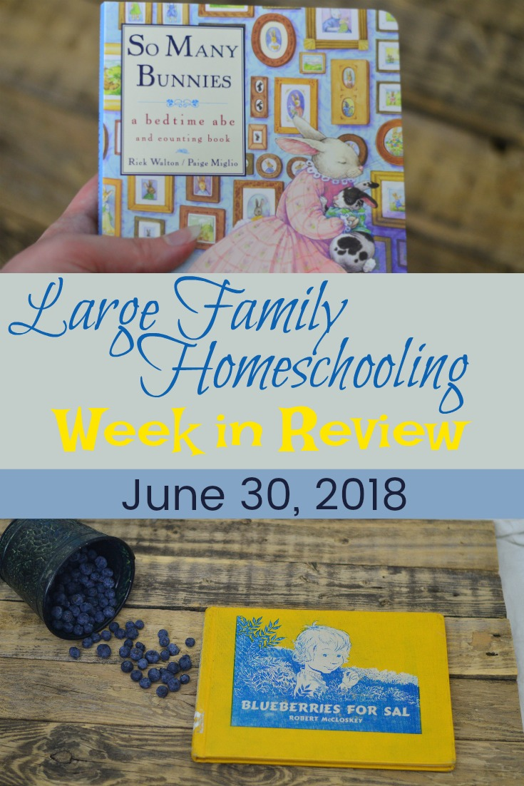 From preschool to high school, find out what we're doing in our homeschool this week!  New books, new curriculum, and new traditions make up this week!