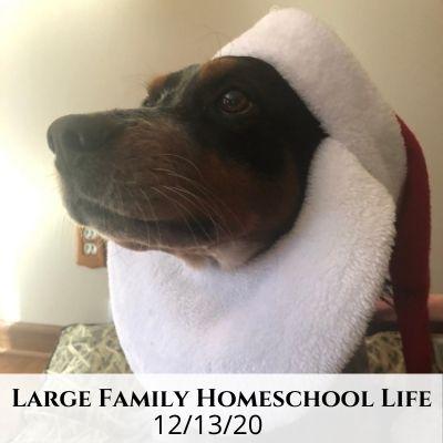 Large Family Homeschool Life – 12/13/20